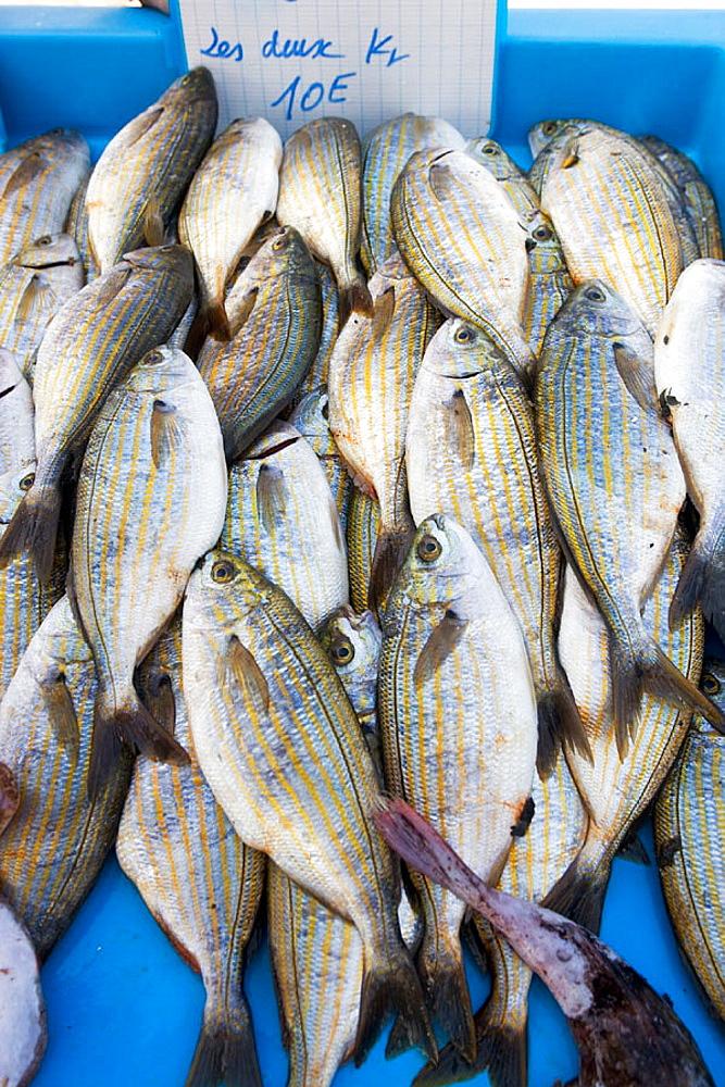 Fish market, Marseille, Bouches du Rhone, France.