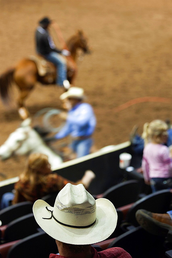 USA, Oklahoma, Oklahoma City, Oklahoma State Fair Park, Cowboy Rodeo Competition, cowboy