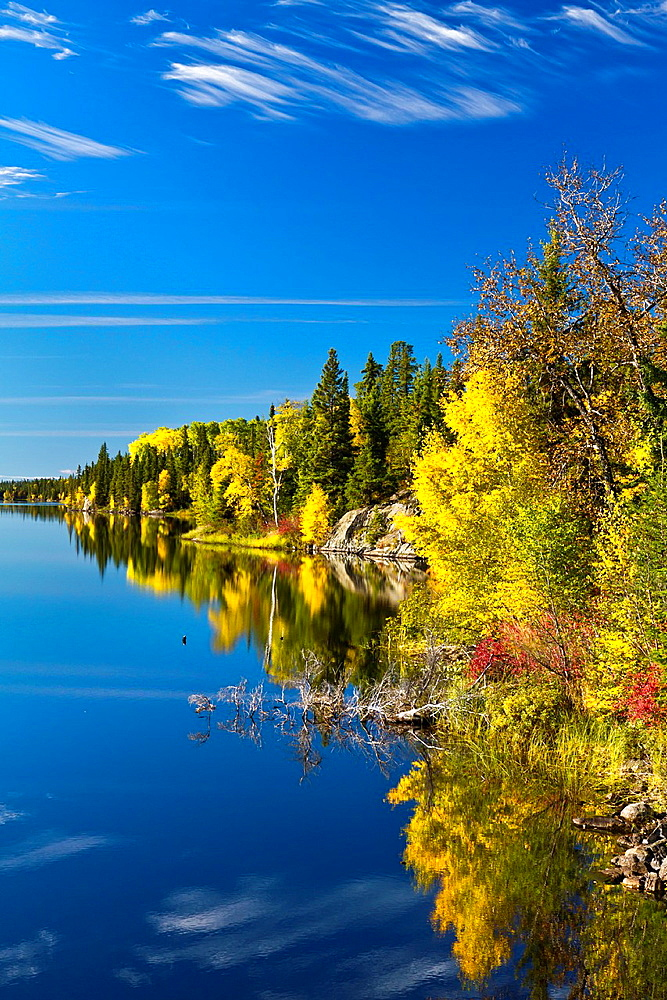 A northern Manitoba landscape of fall foliage color and reflections in a small lake near Flin Flon, Manitoba, Canada
