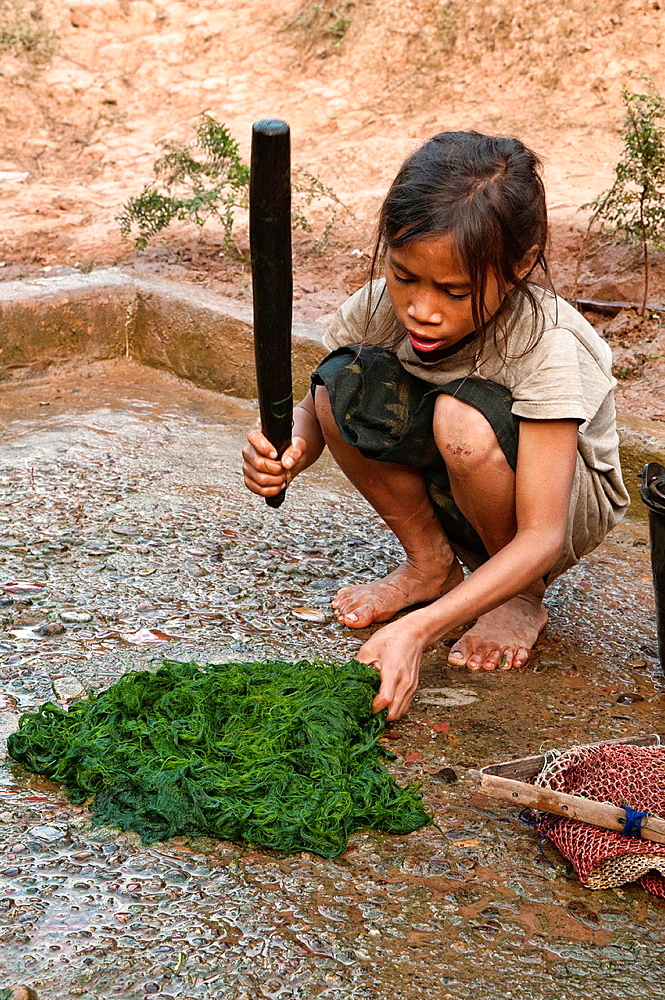 Ethnic Khmu girl cleaning river weed, Luang Nam Tha, Laos