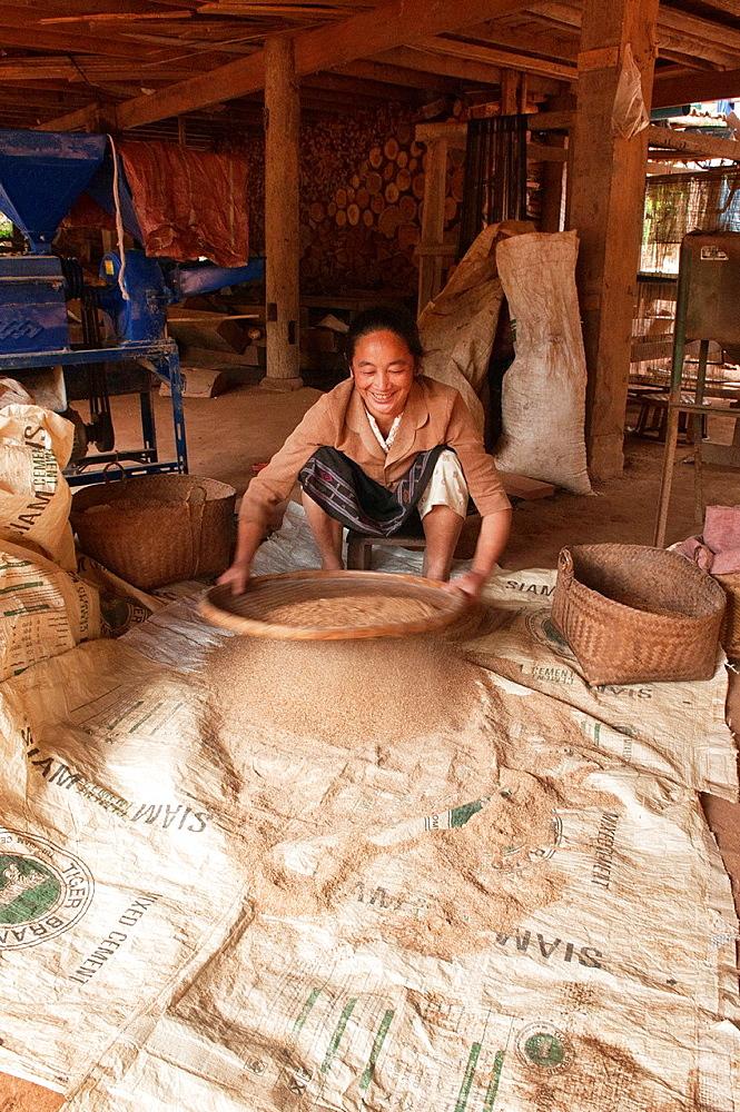 ethnic Khmu woman sifting rice, Luang Nam Tha, Laos