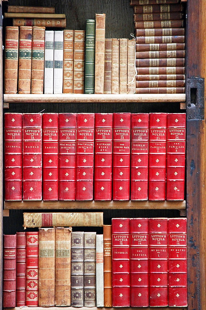 Books collection stored on a shelf in front of an old bookshop, city of Geneve, Switzerland.