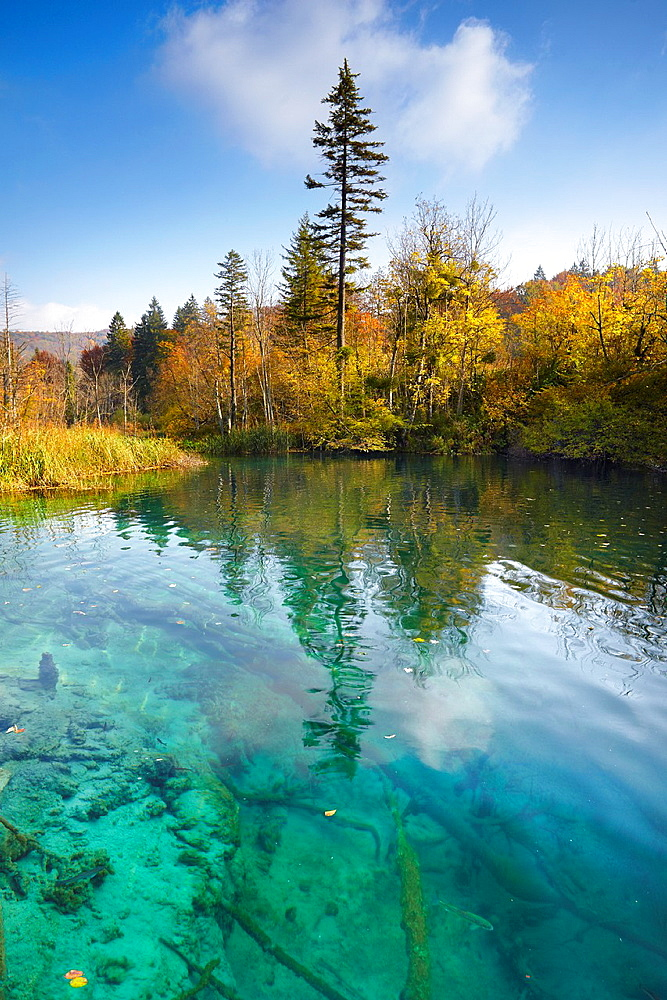 Croatia, autumn landscape of Plitvice Lakes National Park, central Croatia.