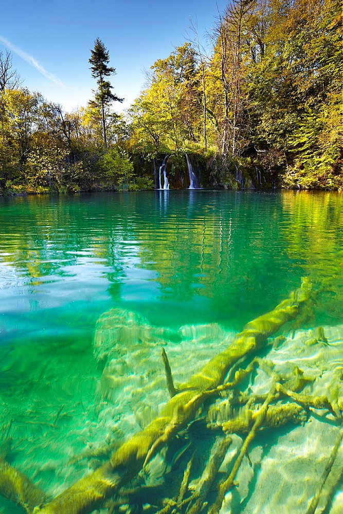 Croatia, Plitvice Lakes National Park, crystal-clear water in the lake, central Croatia.