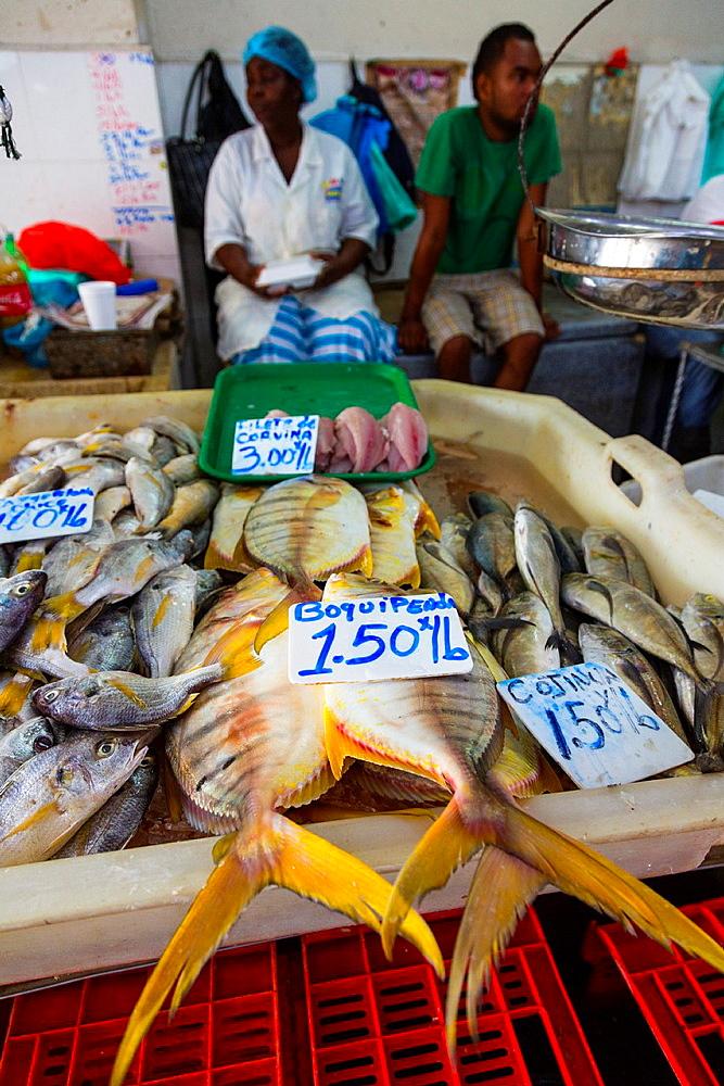 Fish Market, Panama City, Panama, Central America, America.