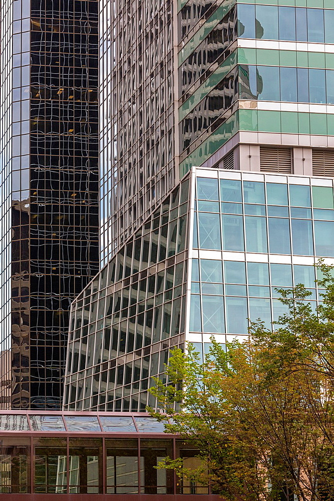 Close up of skyscrapers in Calgary, Alberta, Canada