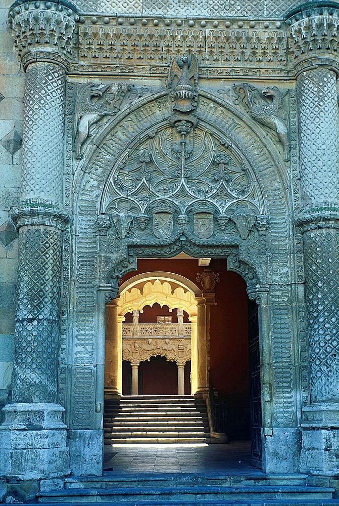 Palace of the Dukes of the Infantado. Guadalajara, Spain.