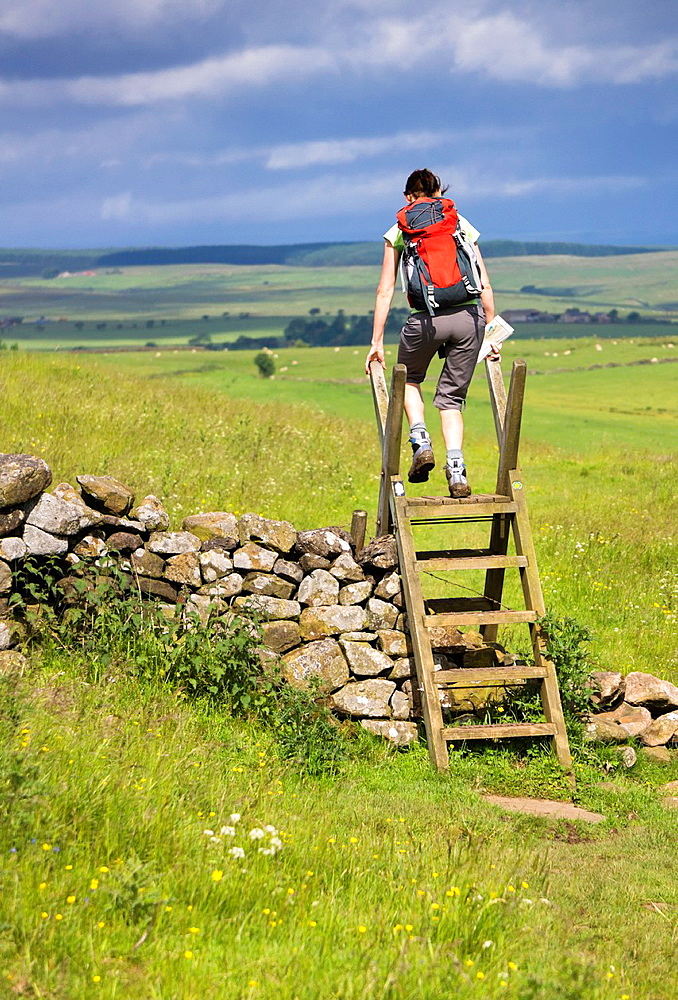 A hiker crossing a stile on the Hadrians Wall Walk in Northumberland, North East of England, UK.