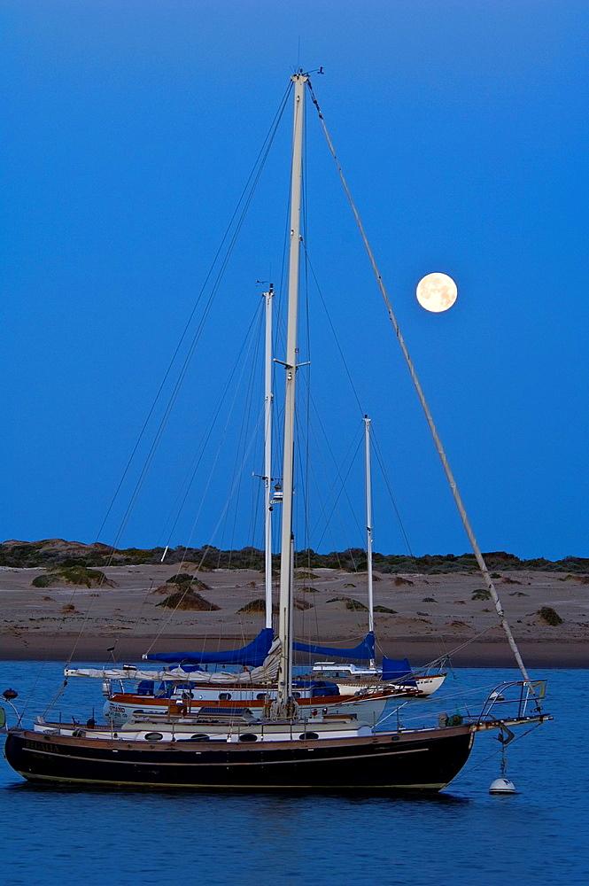 Full moon setting at dawn over sailboats in Morro Bay, California.