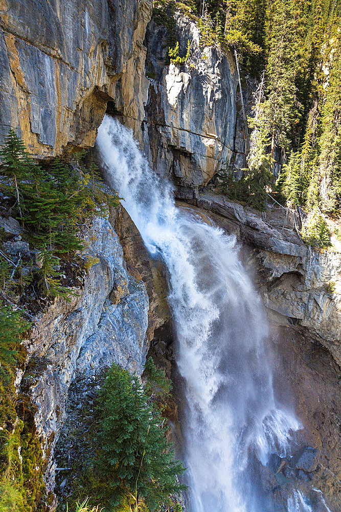 Panther Falls in the Banff National Park, Alberta, Canada