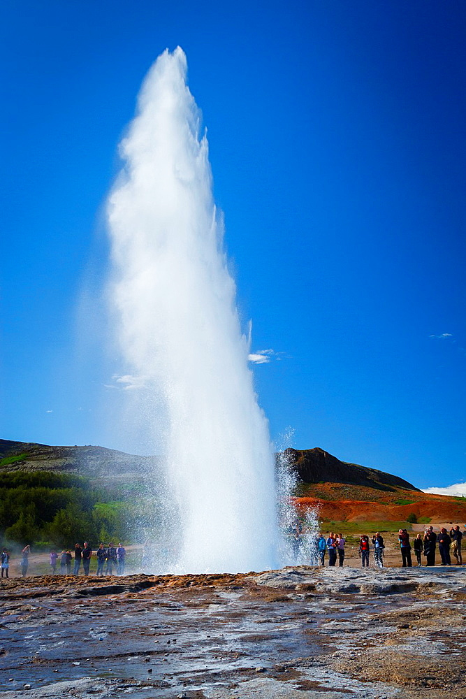 Geyser Geysir. Haukadalur valley, Golden Circle route. Iceland, Europe.