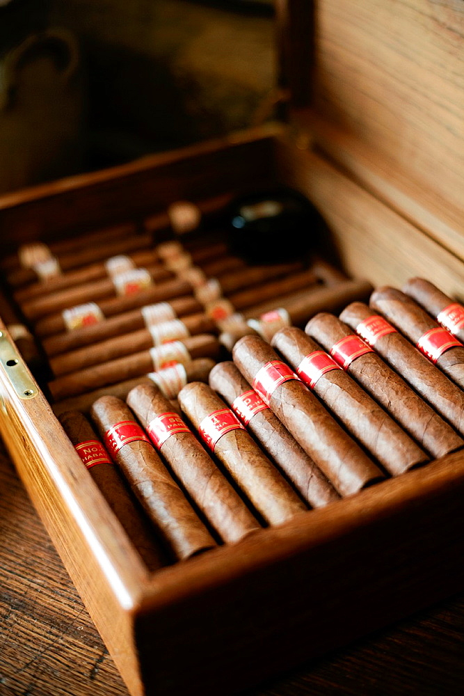 Cigars Partagas Serie D4. La Tupina. The greedy street. Bordeaux. Gironde. Aquitaine. France. Europe.