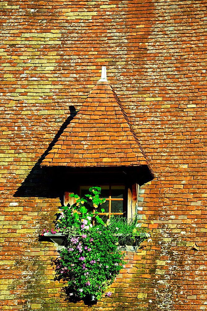 architectural detail, Beaune, Department of Cote d'Or, Burgundy, France, Europe