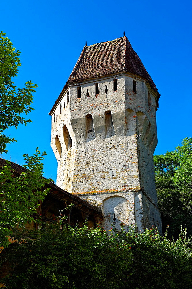 Defensive tower of Sighisoara Saxon fortified medieval citadel, Transylvania, Romania.