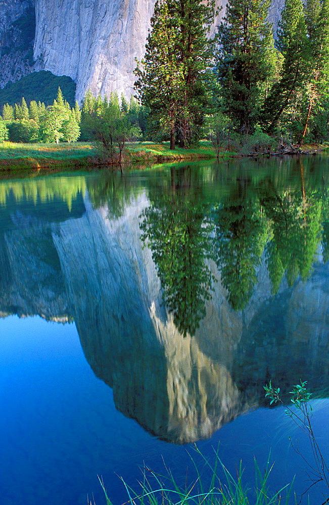 Morning light on El Capitan reflected in the Merced River, Yosemite Valley, Yosemite National Park, California USA.