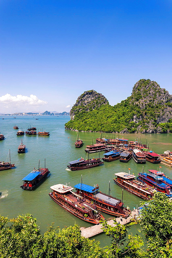 Vietnamese Junks on Halong Bay.