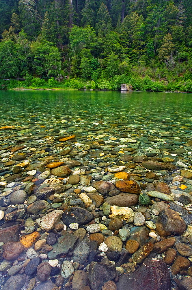 Rocks underwater in the Smith River, Jedediah Smith Redwoods State Park, California.