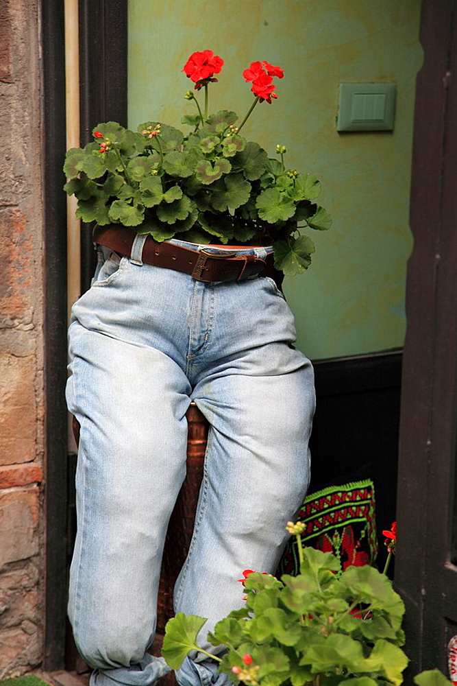 Flowers growing in pair of denim jeans in Perugia, Italy
