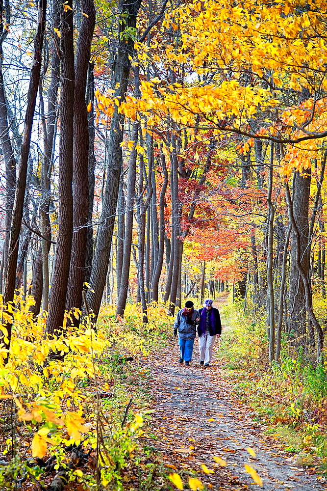 Dune Acres, Indiana, Two elderly women hike on a trail in Indiana Dunes National Lakeshore.