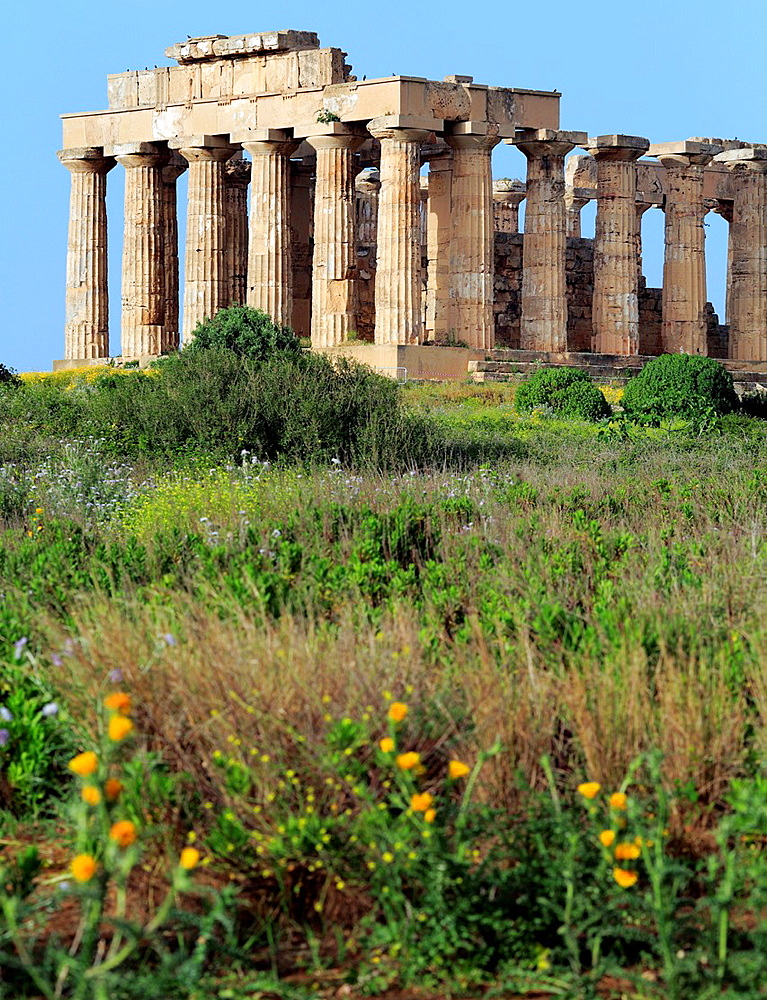 Temple of Hera, Selinunte, Sicily, Italy. - 817-467290