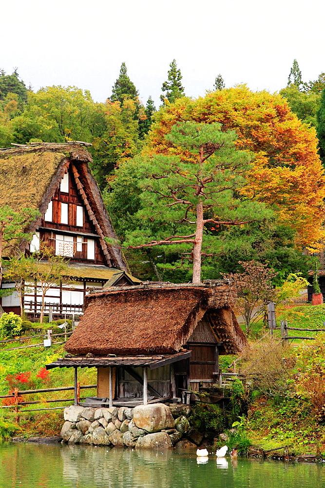 Japan, Hida, Takayama, Hida no Sato, old farmhouses,.