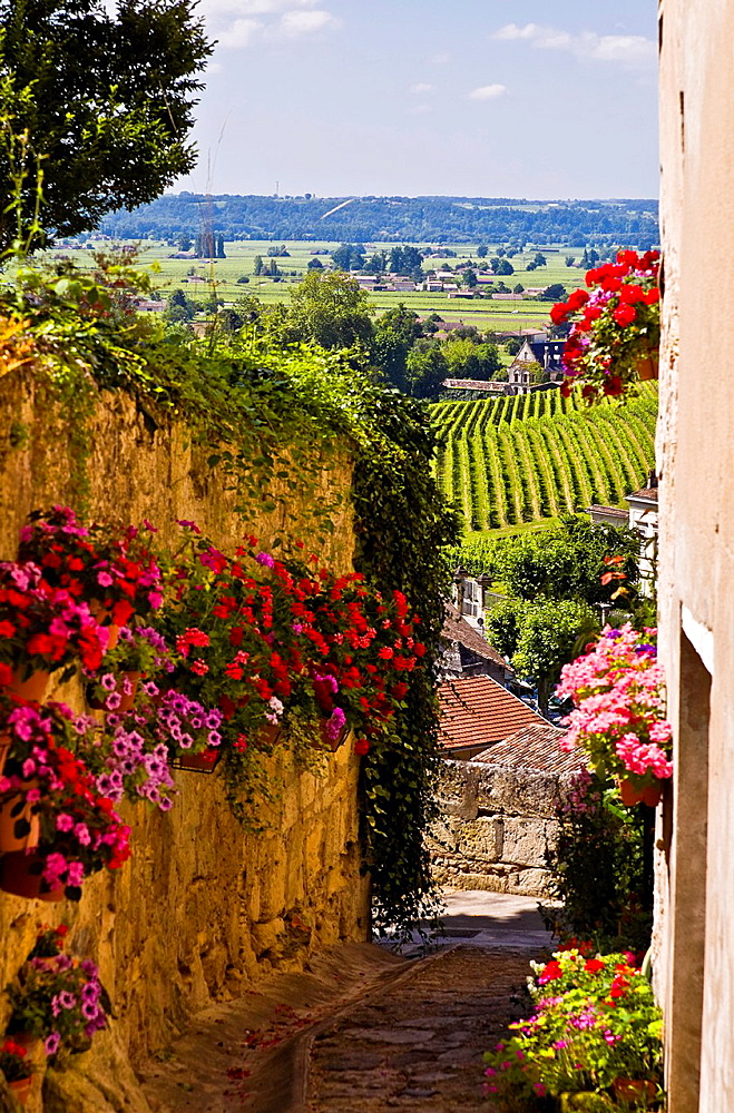 st. emilion in bordeaux region. france.