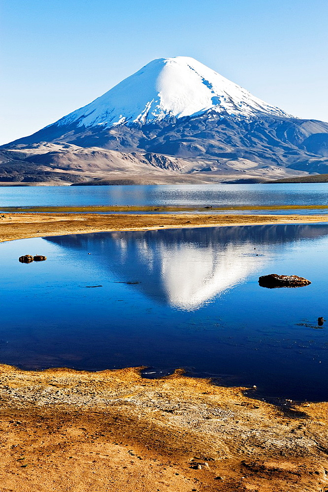 Parinacota volcano reflecting in the Chungara lake, Lauca national park, UNESCO Biosphere Reserve, Arica and Parinacota Region, Chile. - 817-472231
