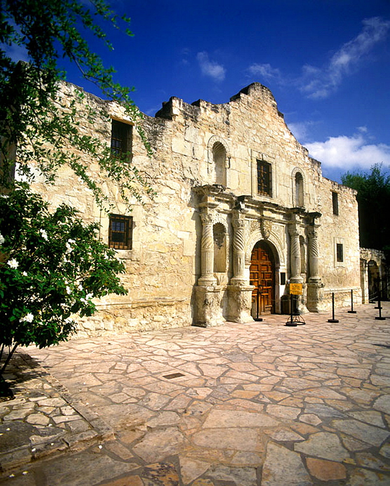 Alamo mission, San antonio, Texas, USA. - 817-57027