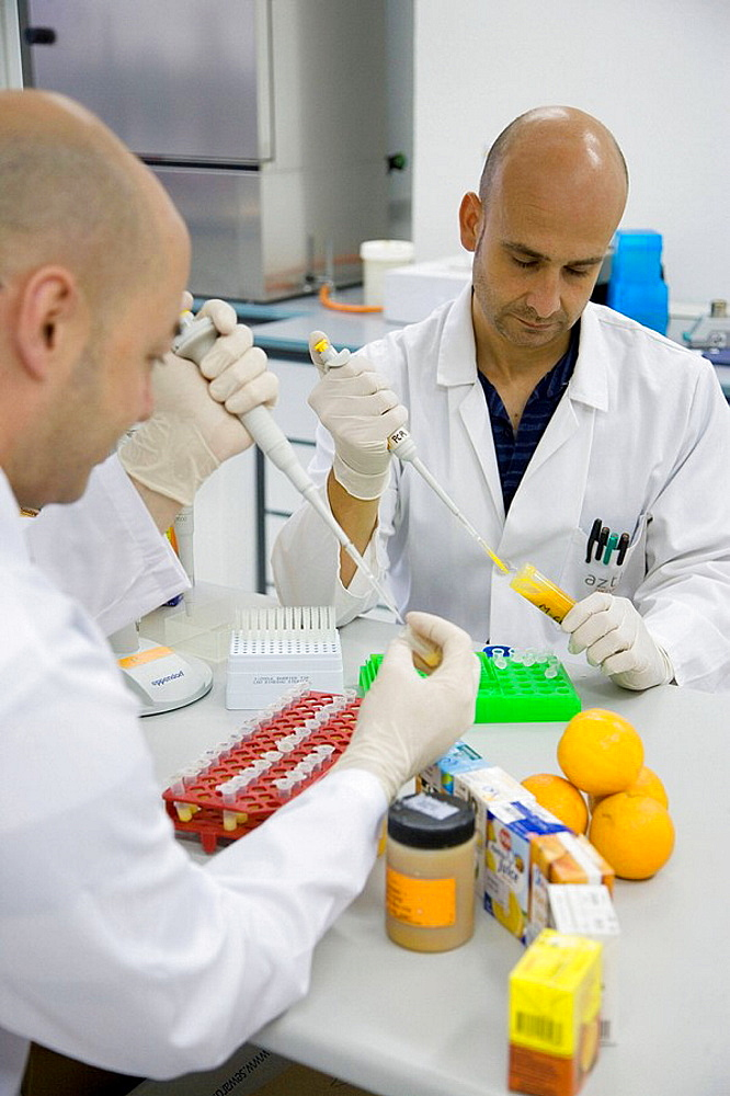 Molecular Biology Laboratory, Preparing samples to detect the addition of tangerine to orange juice with DNA techniques, AZTI-Tecnalia, Technological Centre specialised in Marine and Food Research, Sukarrieta, Bizkaia, Euskadi, Spain.