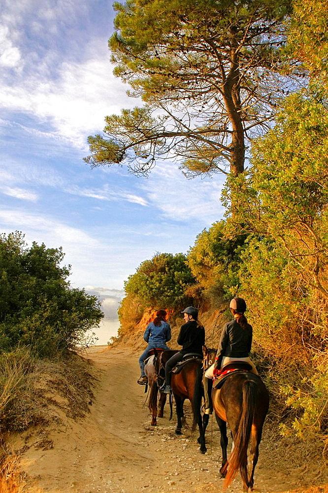 'Sentier des Douaniers' walking track from Saint Florent to Patrimonio, Corcica, France