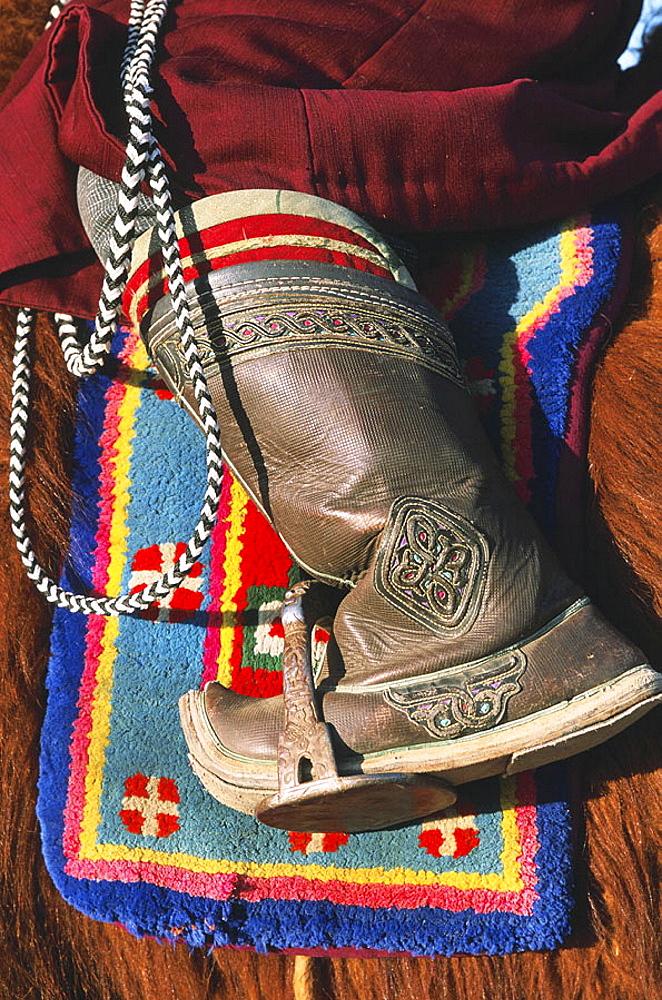 Mongolia, Gobi desert, Dalanzadgad area, Moron village, Camel festival, Mongolian new year.