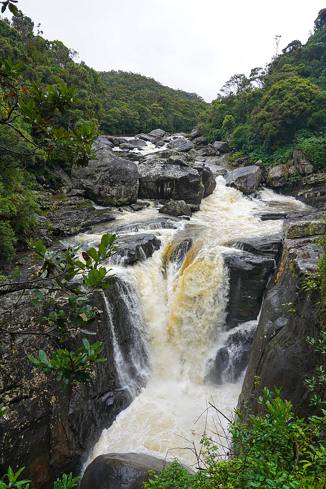 Waterfall, Parc National de Ranomafana, Ranomafana, Central Madagascar, Africa