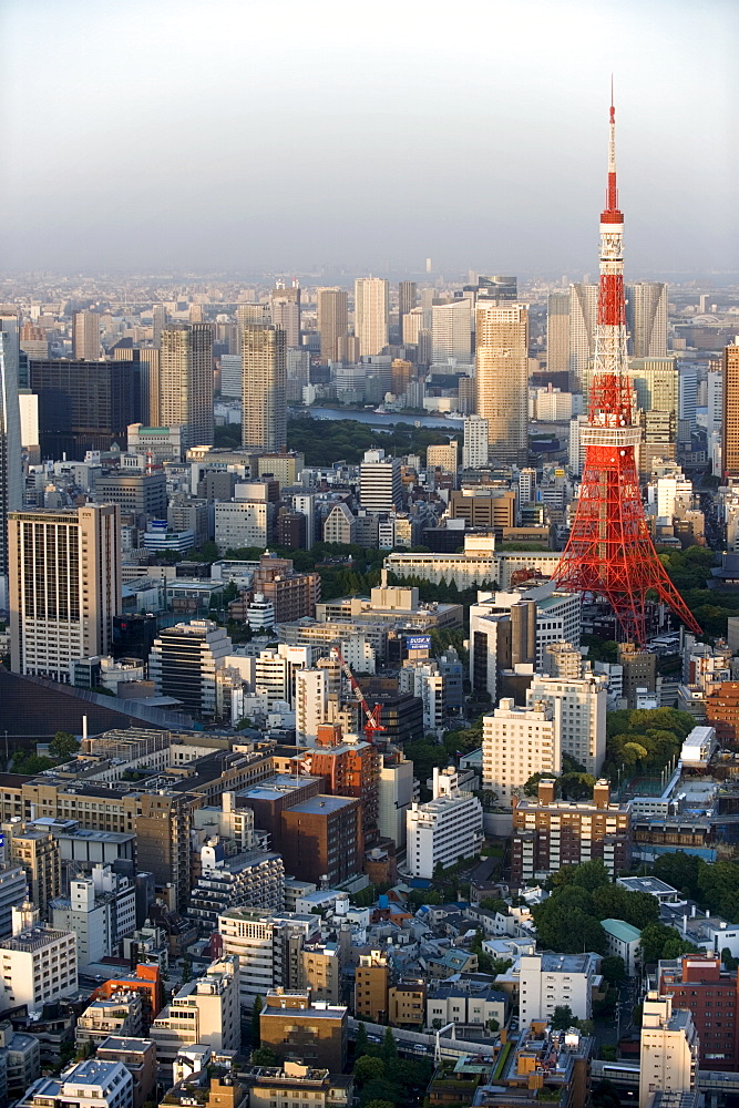 Aerial view of metropolitan Tokyo and Tokyo Tower from atop the Mori Tower at Roppongi Hills, Tokyo, Japan, Asia