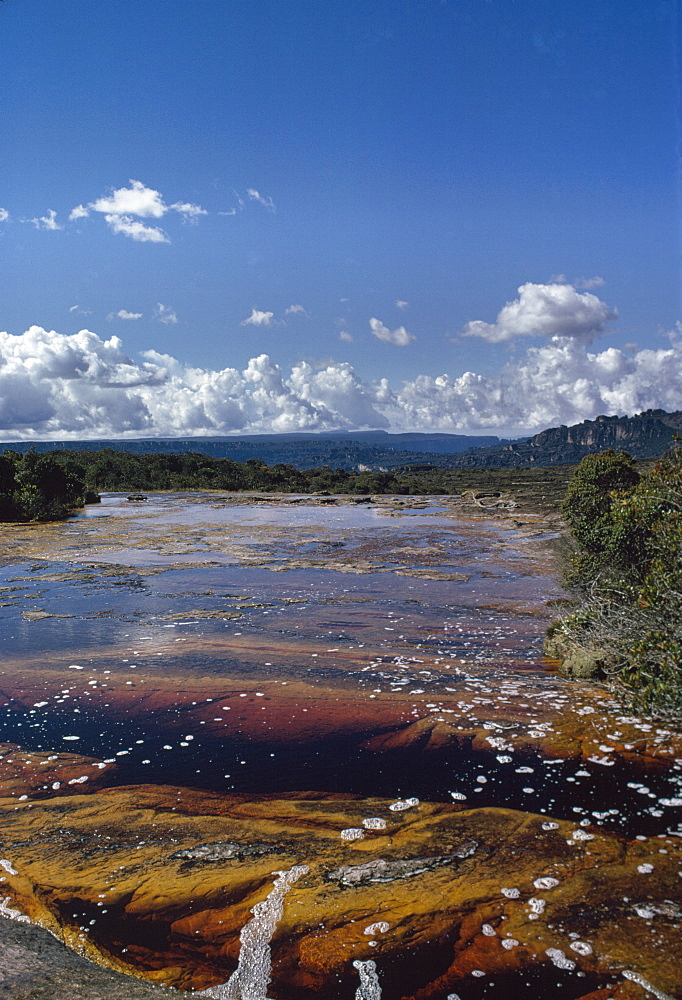 Auyantepui (Auyantepuy) (Devil's Mountain) summit, Blackwater River (Golden River), Canaima National Park, UNESCO World Heritage Site, Venezuela, South America