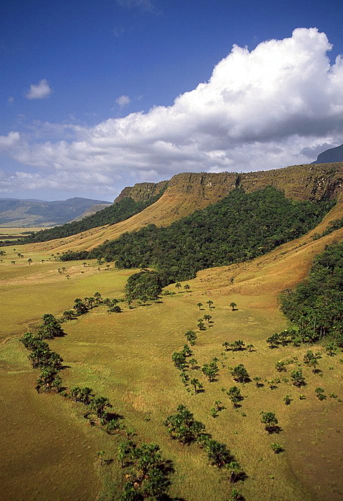 Aerial image of tepuis showing Mount Auyantepui (Auyantepuy) (Devil's Mountain), Venezuela, South America