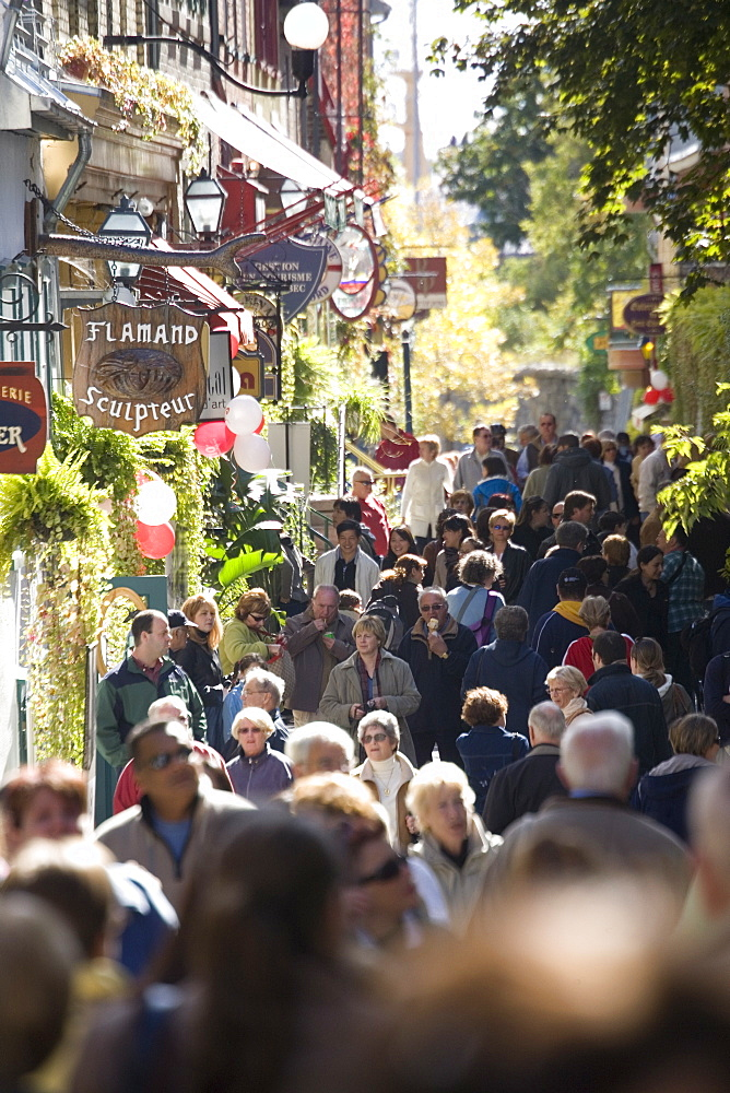 Crowds walking down street in the Lower town, Old Quebec, Quebec City, Quebec, Canada, North America - 825-144