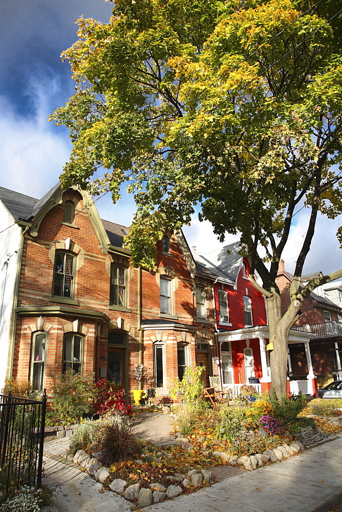 Victorian houses in the fall, Toronto, Ontario, Canada, North America - 825-164