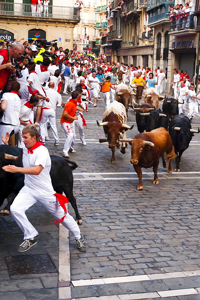 Eighth and last Encierro (running of the bulls), San Fermin festival, Pamplona, Navarra (Navarre), Spain, Europe - 827-330
