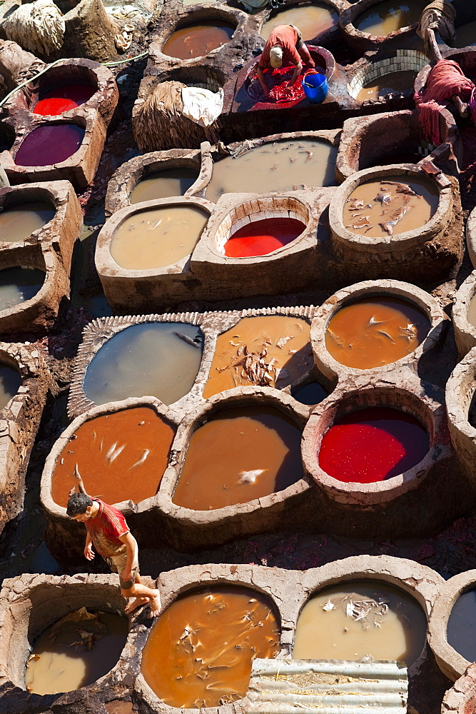 Fez Tannery, Fez, Morocco, North Africa, Africa