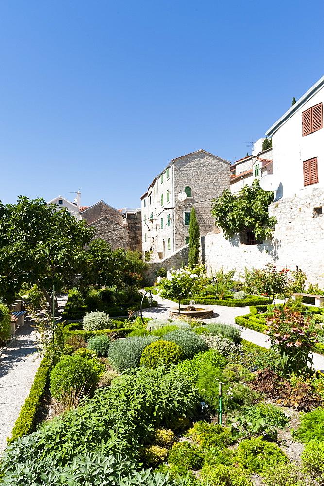 Medieval mediterranean garden of St. Lawrence Monastery, Sibenik, Dalmatia region, Croatia, Europe - 827-475