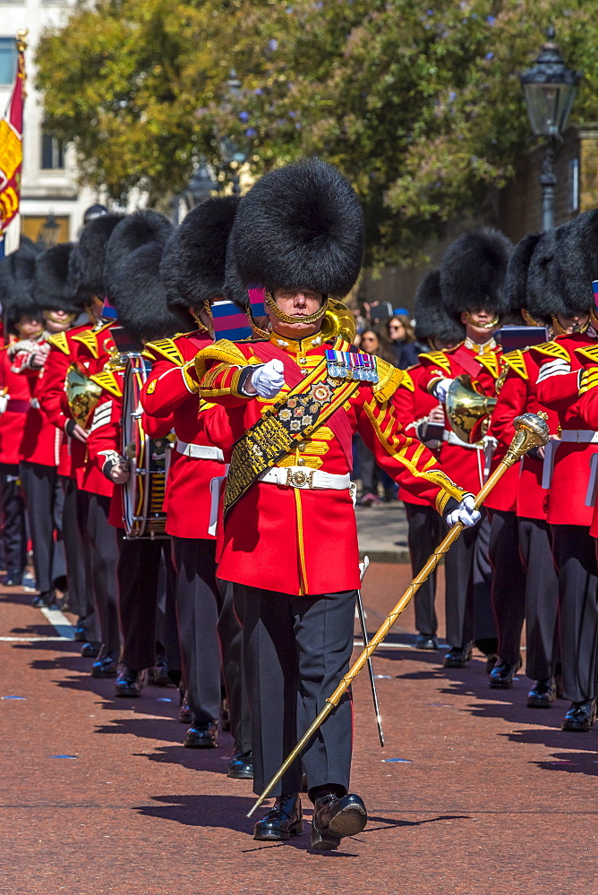 Changing of the Guard, Buckingham Palace, The Mall, London, England, United Kingdom, Europe