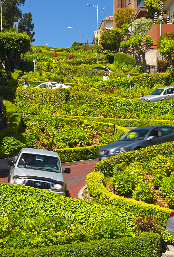 Lombard Street, the Crookedest street in the world, San Francisco, California, United States of America, North America