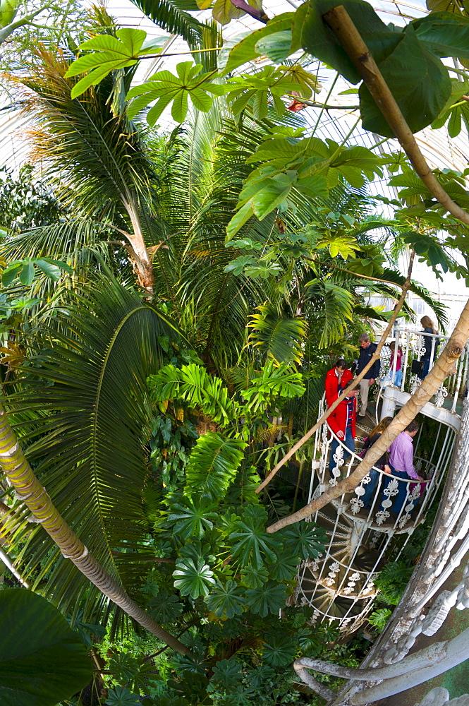 Royal Botanic Gardens Kew, UNESCO World Heritage Site, Greater London, England, United Kingdom, Europe