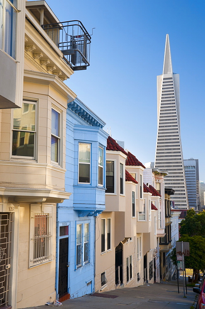 Downtown and TransAmerica Building from Telegraph Hill Historic District, San Francisco, California, United States of America, North America