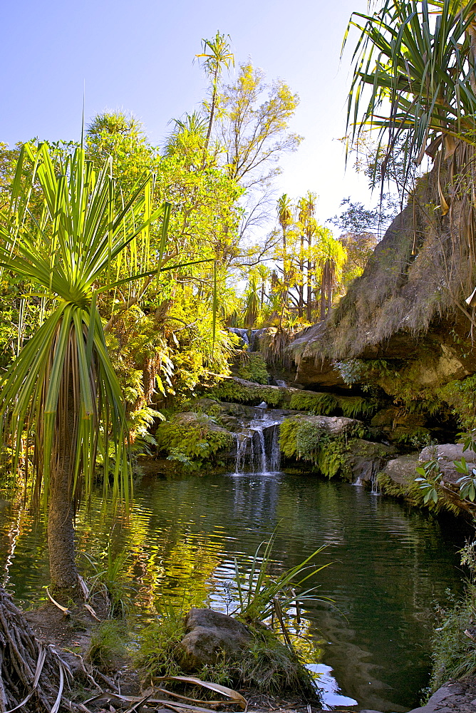 The Piscine Naturelle (Natural pool) in Isalo National Park in southern Madagascar, Madagascar, Africa