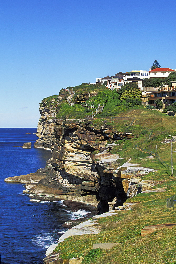 The Eastern Reserve section of the Dover Heights to Vaucluse Cliff Walk, a very popular 3km coastal hike north of Bondi, Dover Heights, Eastern Suburbs, Sydney, New South Wales, Australia, Pacific