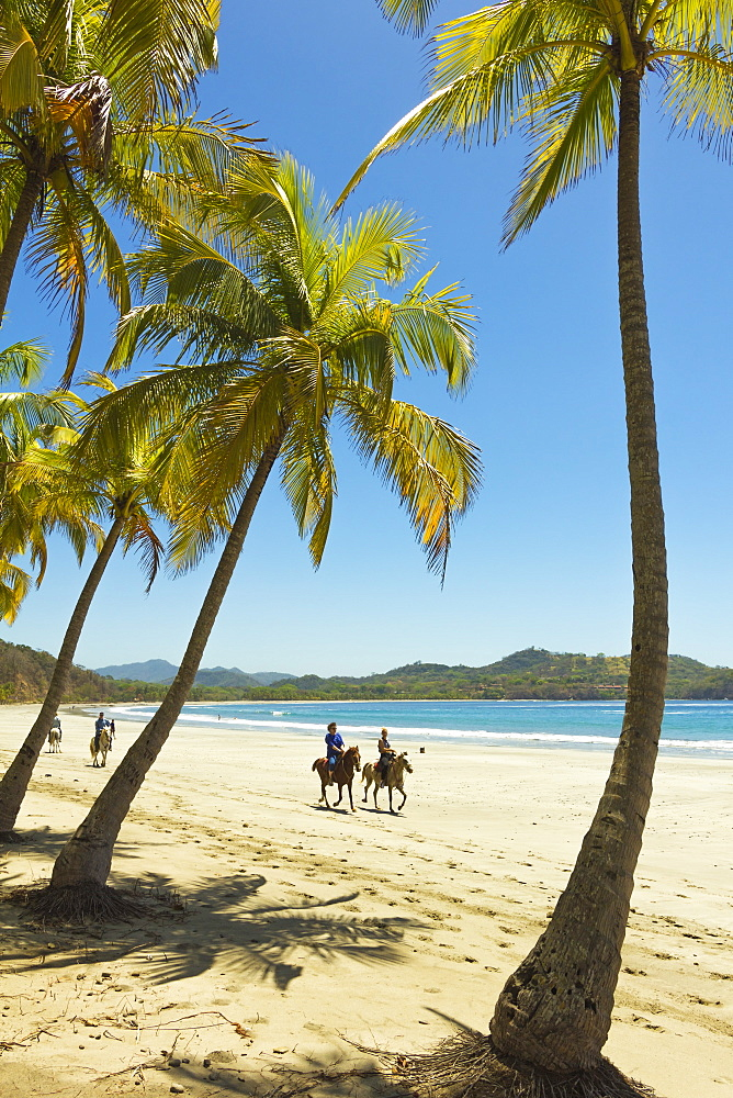 Horse riders on beautiful palm fringed Playa Carrillo, Carrillo, near Samara, Guanacaste Province, Nicoya Peninsula, Costa Rica, Central America