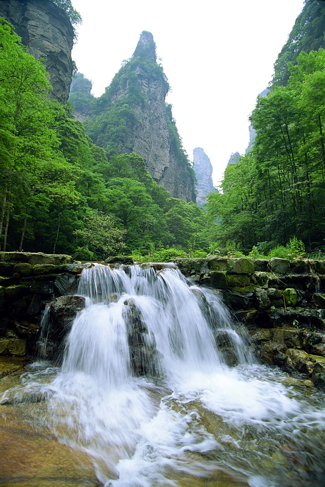 Small waterfall in spectacular limestone outcrops and forested valleys of Zhangjiajie Forest Park in Wulingyuan Scenic Area, UNESCO World Heritage Site, Hunan, China, Asia