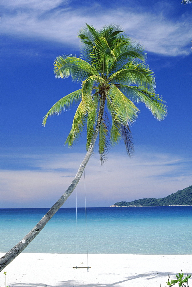 Palm tree and beach, Long Beach, Perhentian Kecil, smaller of the two Perhentian Islands, Terenggenu (Terengganu), Malaysia, Asia