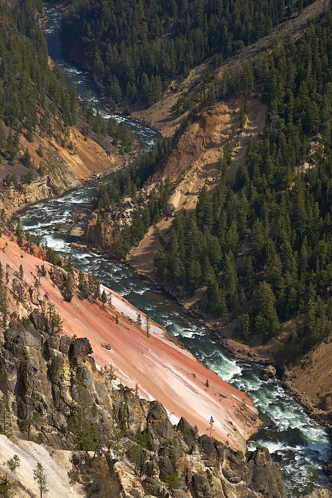 Grand Canyon of the Yellowstone River, from Inspiration Point, Yellowstone National Park, UNESCO World Heritage Site, Wyoming, United States of America, North America